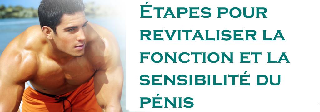 Étapes pour revitaliser la fonction et la sensibilité du pénis