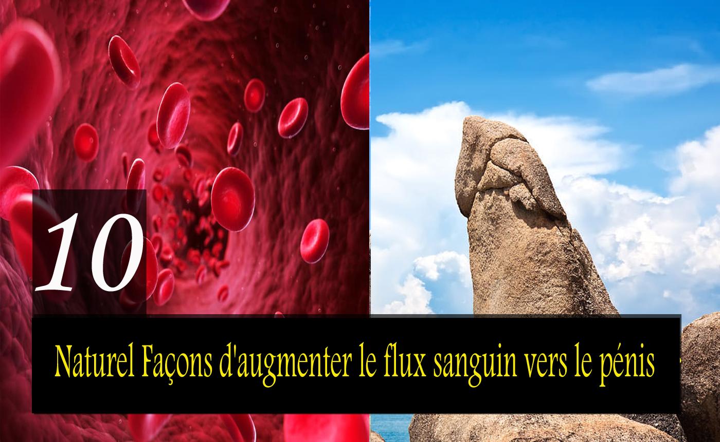 10 meilleures façons naturelles d'augmenter le flux sanguin vers le pénis pour améliorer la force et l'érection du pénis