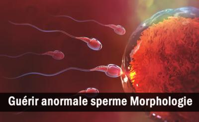 Guérir Anormal Sperme Morphologie