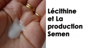 Lécithine et La production Semen - Guide complet pour augmenter le volume éjaculat