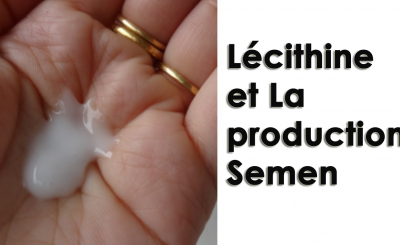 Lécithine et La production Semen